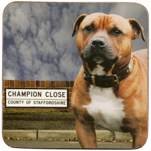 Staffordshire Bull Terrier Dog Cork Backed Drink Coaster