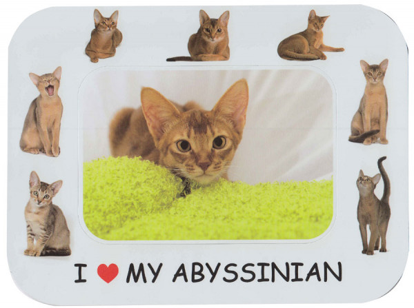 I Love My Abyssinian Cat Magnetic Photo Frame