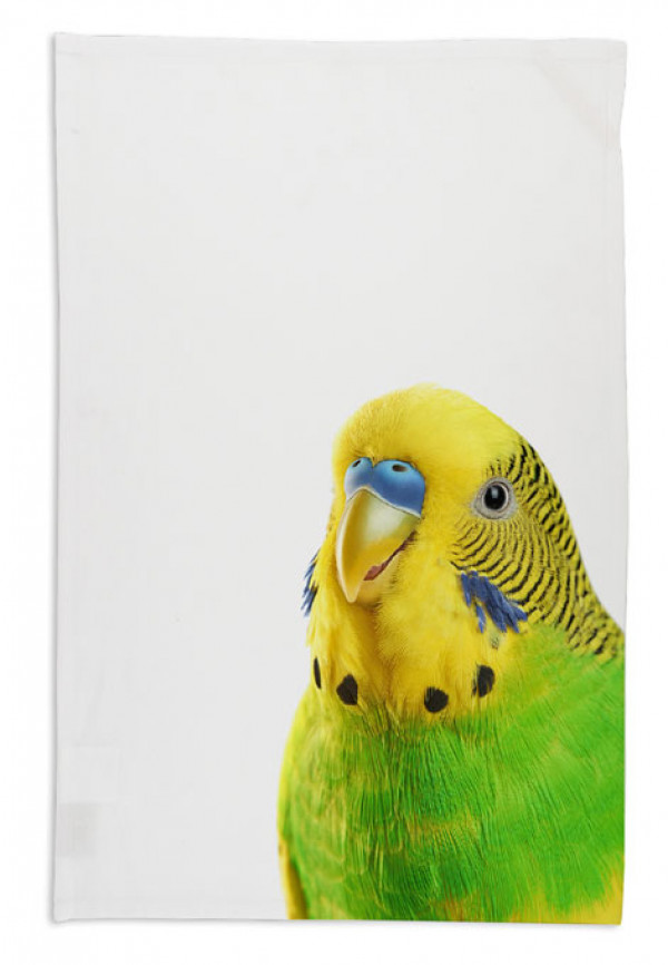 budgie-tea-towel-white