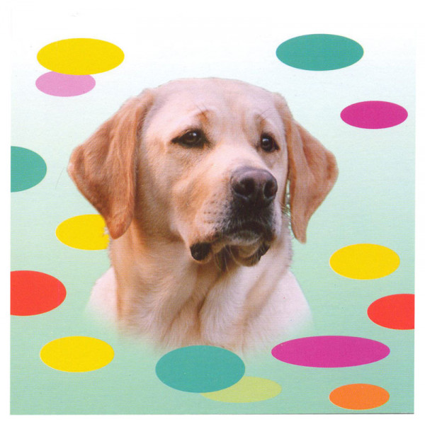 Yellow Labrador Dog Magnetic Notepad